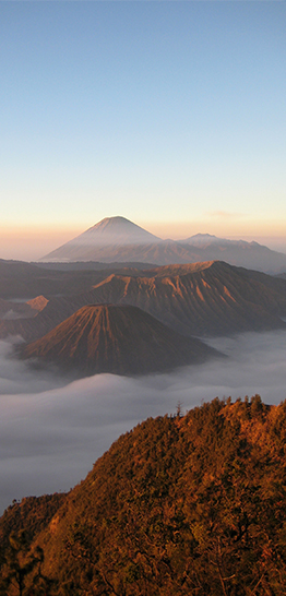 Banner home - Bromo - 262 x 546 px