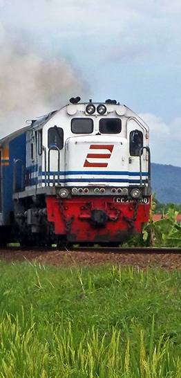 Banner trein - roodwitblauw - 262 x 546 px