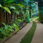 Gladiola_Entrance_path