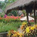 Lombok Novotel 8