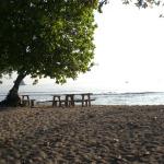 Tangkoko_Benteng_resort_13
