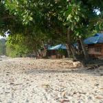 Tangkoko_Benteng_resort_9