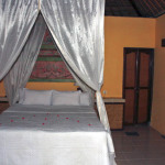 Bali_Pemuteran_Tamanseline_2_2jan2010