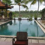 UBud.Greenfiled_bungalow.zwembad.09
