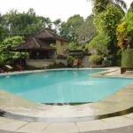 Ubud Champlunghotel12