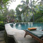 Ubud.Sayan_Terrace.zwembad.09.img