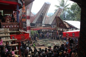 Sulawesie cultuur